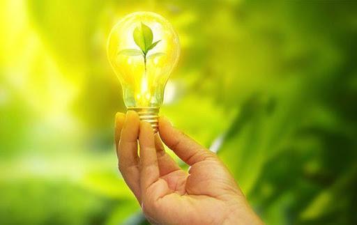 ООО «ЛТК «Электрум» купило «зеленую» электроэнергию на дебютном аукционе «Гарантированного покупателя»
